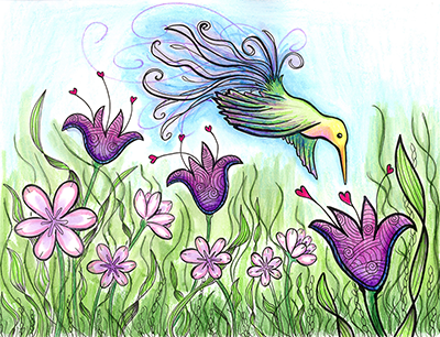 hummingbird flowers drawing shelly dax